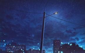 Picture night, the city, rain