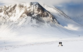 Picture cold, winter, snow, mountains, rocks, the slopes, dog, lies, the border collie, snowy peaks