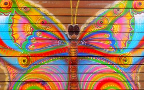 Picture butterfly, the fence, color, Paint