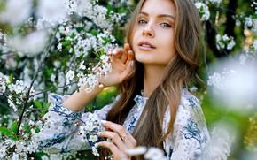 Picture look, Girl, flowers, Alexander Urmashev