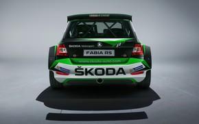 Picture Concept, rear view, Skoda, 2019, Fabia R5