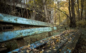 Picture autumn, bench, naturalism