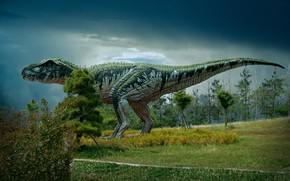 Picture dinosaur, dinosaur valley, dinosaur museum