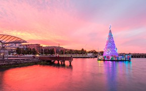 Picture lights, tree, Australia, Christmas, Geelong