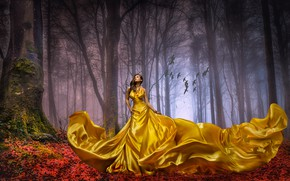 Picture autumn, forest, leaves, girl, trees, landscape, birds, nature, pose, fog, gold, mood, trunks, silk, dress, …