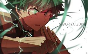 Picture hero, guy, Boku No Hero Academy, Midori Isuku, My heroic academia