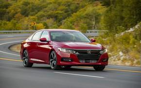 Picture road, asphalt, red, turn, Honda, Accord, sedan, 2018, four-door, 2.0T Sport