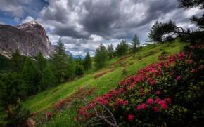 Wallpaper nature, Dolomites, Mountain landscape, Falzarego pass
