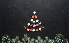 Picture background, holiday, new year, stars, tree branches