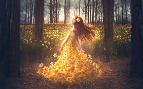 Picture GIRL, FOREST, NATURE, FIELD, FLOWERS, BROWN hair, SPRING, DAFFODILS