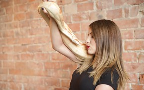 Picture Girl, Snake, Wall, Girl, Beauty
