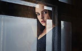 Picture glass, window, sponge, Alina, Sergey Fat