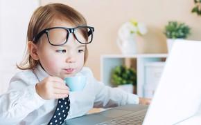 Picture boy, milk, glasses, laptop