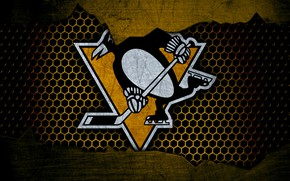 Picture wallpaper, sport, logo, NHL, hockey, Pittsburgh Penguins