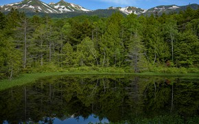 Picture Nature, Reflection, Mountains, Lake, Forest, Shore, Landscape