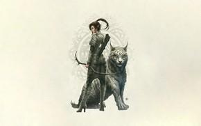 Picture Cat, Cat, Style, Kerem Couplets, Fantasy, Elf, Style, Fiction, Cat, Fiction, Illustration, Elf, Character, Archer, …