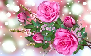 Picture Graphics, Flowers, Bukiet, Roses