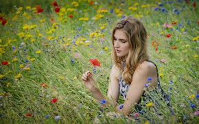 Picture girl, flowers, meadow, bokeh, Viktoria