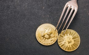 Picture fork, coins, Cryptocurrency