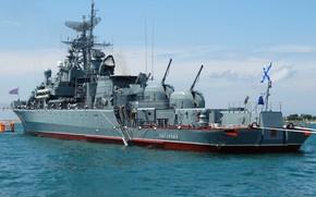 Picture ship, guard, Inquisitive, project 1135M