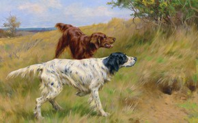 Picture Grass, Trees, Dogs, Two, Thomas Blinks, Setters, Томас Блинкс, Сеттеры