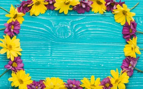 Picture flowers, background, blue, Blue, yellow, wood, flowers, purple