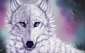 Picture look, wolf, white wolf, myarukawolf, by myarukawolf