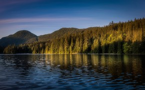Picture forest, the sky, light, mountains, blue, shore, ate, pond