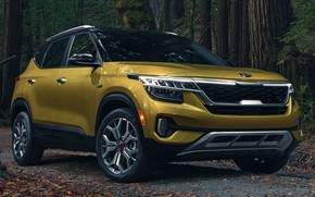 Picture road, car, machine, forest, close-up, lights, front, yellow, wheel, Golden, Kia, crossover, AWD, led lights, …