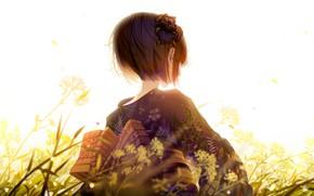 Picture Girl, Grass, Back, Yukata