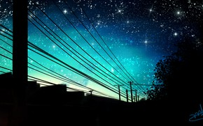 Picture the sky, trees, night, home, power lines, by wy