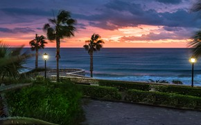 Picture sea, trees, landscape, the city, palm trees, shore, the evening, lights, Spain, promenade, Andalusia, Mojacar