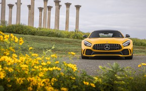 Picture Mercedes-Benz, front view, AMG, GT R, 2020