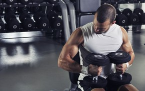 Picture pose, muscle, training, athlete, dumbbells, biceps, fitness, bodybuilder, training, weight, dumbbells, biceps, bodybuilder
