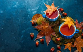 Picture autumn, leaves, tea, moss, Cup, drink, mugs, still life, acorns