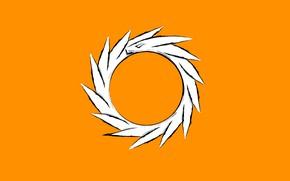 Picture white, dragon, orbit, orange background