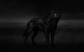 Picture Dog, Key, Dog, Art, Art, Animal, Animal, Key, Maria Zolotukhin To, by Maria Zolotukhina, Old …