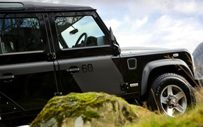 Picture stone, moss, 2008, Land Rover, Defender, SVX, 60th Anniversary Edition