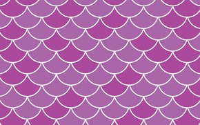 Picture background, texture, wave, scallops
