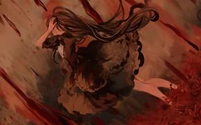 Picture girl, blood, Homura Akemi, Mahou Shoujo Madoka Magica, licorice, Homulilly