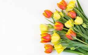 Picture flowers, bouquet, yellow, tulips