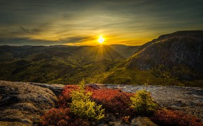 Picture mountains, nature, morning