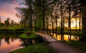 Picture trees, landscape, sunset, nature, pond, track, Netherlands, the bridge, Holland