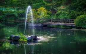 Picture greens, grass, trees, bridge, pond, Park, stones, Japan, fountain, the bushes, jet, Numata