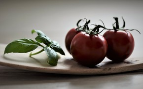 Picture food, vegetables, tomatoes