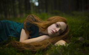 Picture forest, sponge, redhead, Olya, Juliana Naidenova