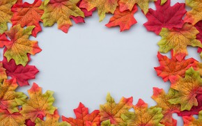 Picture autumn, leaves, background, colorful, maple, background, autumn, leaves, autumn, maple