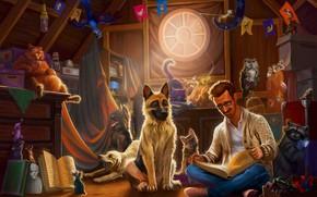 Wallpaper Dog, Room, Uncle