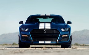Picture blue, Mustang, Ford, Shelby, GT500, front, 2019