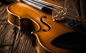 Picture Music, Violin, Strings